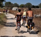 cykla bland ängar och olivträd