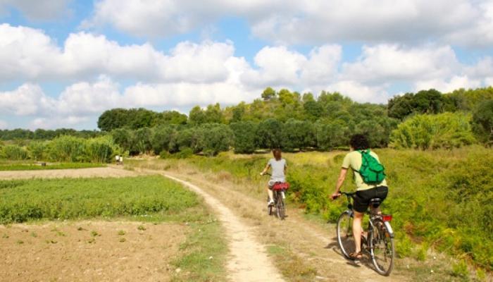 Cykeltur mellan åkrar