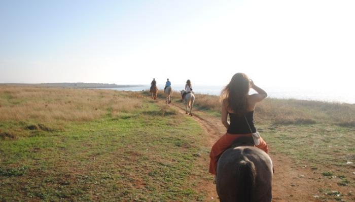 rida häst vid havet