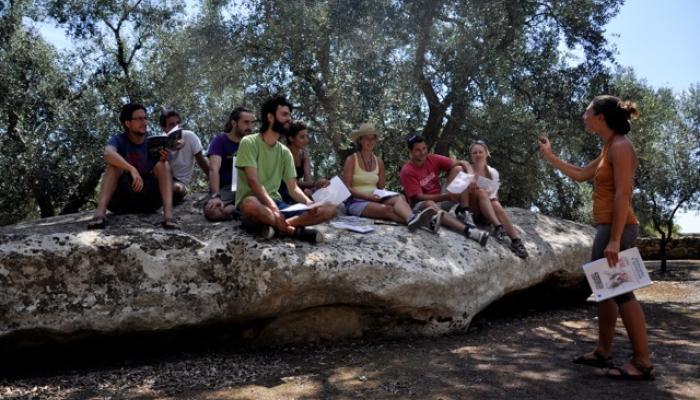 Lektion i italienska i skuggan av olivträd